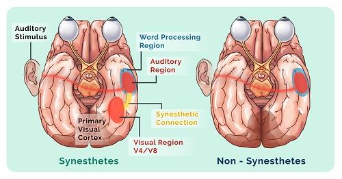 Man sitting doing synesthesia meditation